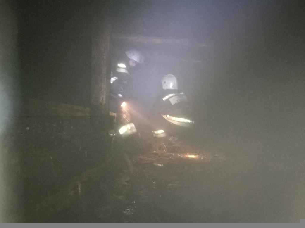 Пожар в Щигровском районе Курской области ликвидирован 11.03.2021